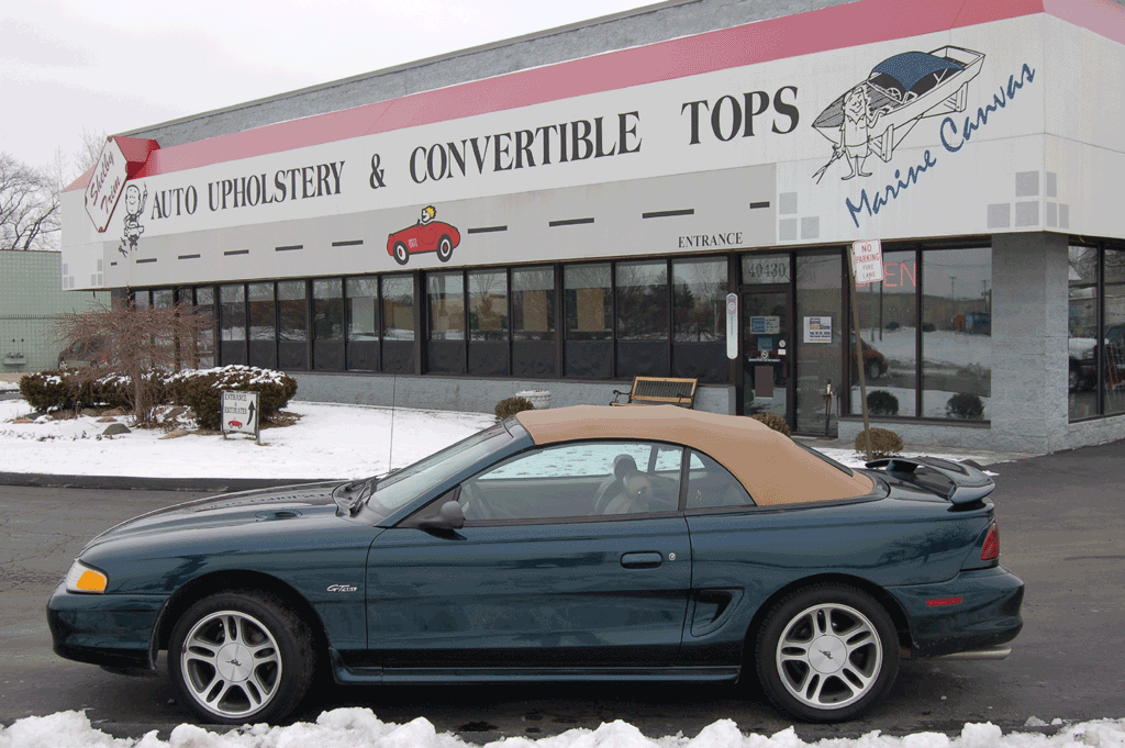 Shelby Trim » Convertible Tops
